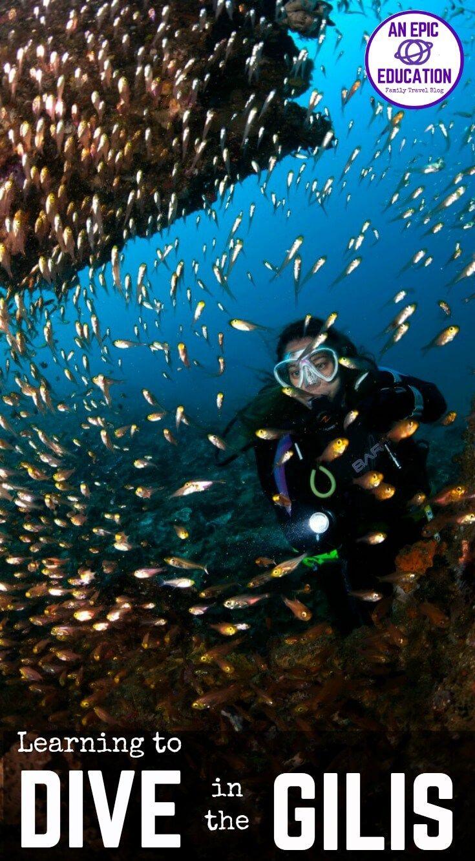 Best 25 scuba diving lessons ideas on pinterest scuba diving divezone review scuba lessons in the gilis and diving gili air xflitez Choice Image