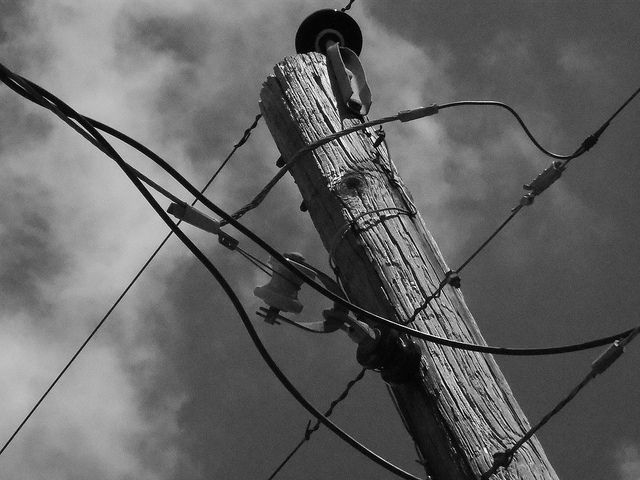 You Really Shouldn't Touch Those Wooden Utility Poles