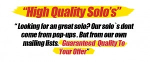 20$ Solo Ads Review