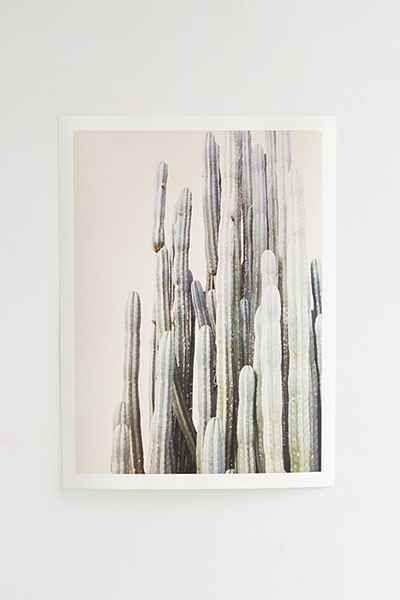 Wilder California Summer Cactus Art Print
