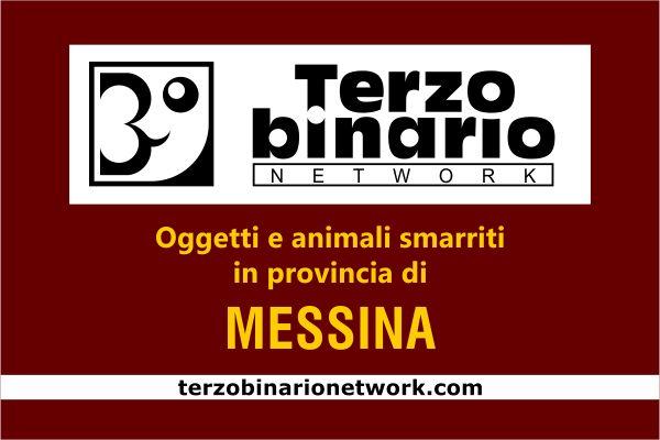 Oggetti e animali smarriti in provincia di Messina