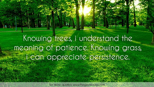 Knowing trees, i understand the meaning of patience. Knowing grass, i can appreciate persistence.  #appreciate #grass #knowing #meaning #nature #patience #persistence #quotes #trees #understand  ©2016 The Gecko Said – Beautiful Quotes