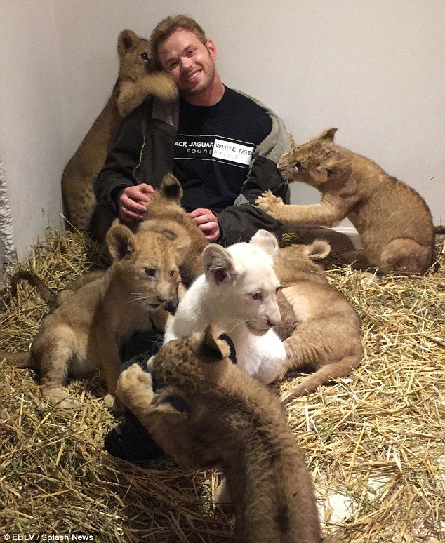 Playtime: Kellan Lutz visited the Black Jaguar White Tiger Foundation in Mexico on Monday ...