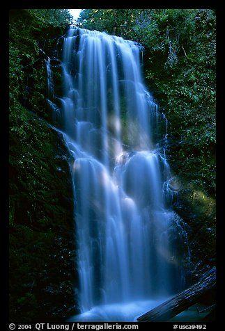 Berry Creek Falls. Big Basin Redwoods State Park, SF Bay area, California, USA.