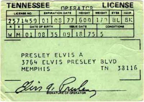 Elvis Presley's Tennessee driver license (September 18, 1975)