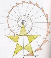 Afbeeldingsresultaat voor fibonacci spiraal