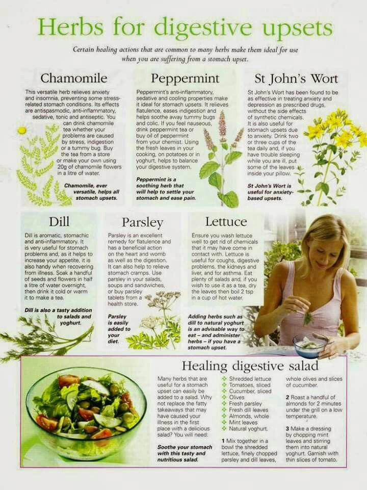 Tummy problems? Stomach ache? Acid reflux? Try herb or fresh green leaves before you eat.
