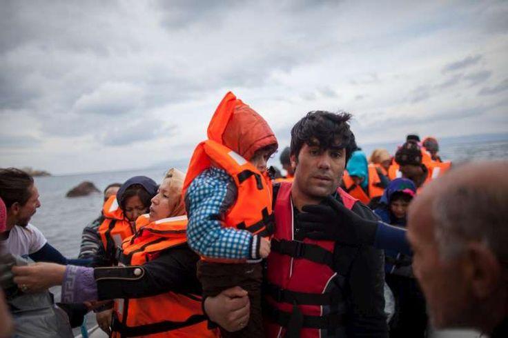 ACNUR en España, la Agencia de la ONU para los Refugiados