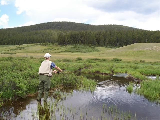 17 best images about wyoming paysages cheyenne laramie for Wyoming fly fishing