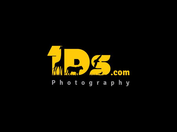 23 best camera and photography logos images on pinterest logo logo design by goh for photography website logo design photography designcrowd publicscrutiny Image collections