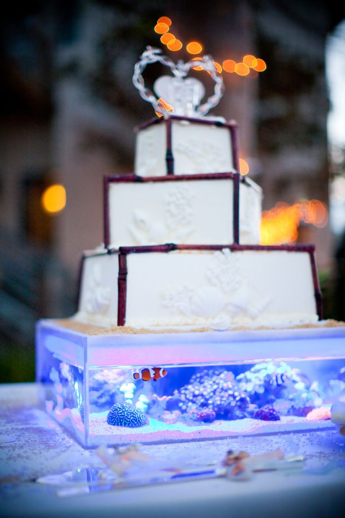 25 best ideas about fish wedding centerpieces on for Fish tank cake designs