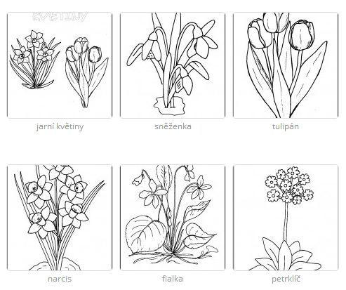 jarné kvety http://www.predskolaci.cz/jarni-kyticky/10943