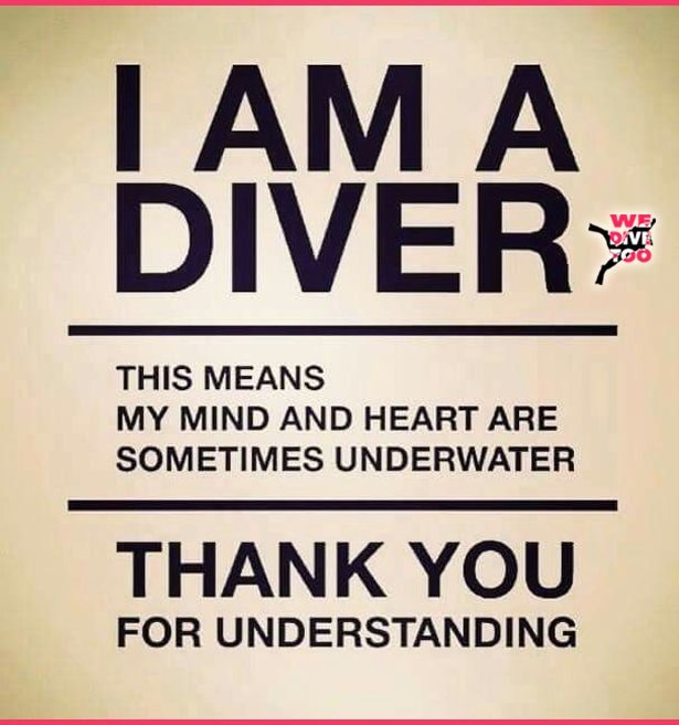 Scuba brain is a real issue that needs to be recognised by your friends and family. It is treated by not slowing you down when you want to go diving. Secondary treatments involve patiently looking at dive photos without complaint, and helping you to carry your gear to the car/truck/boat. #scubadiving #scubadiver