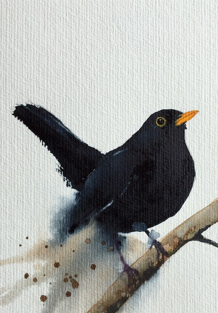Aquarell Amsel Vogel Malen In 2020 Watercolor Animals