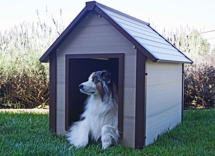 1000 ideas about insulated dog houses on pinterest dog for Insulated dog house for sale