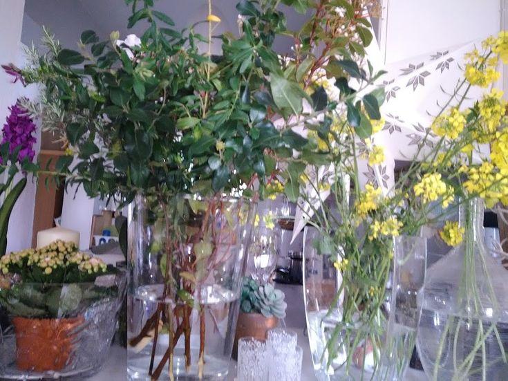 Λουλουδια στο σπιτι μας Φωτογραφίες Google