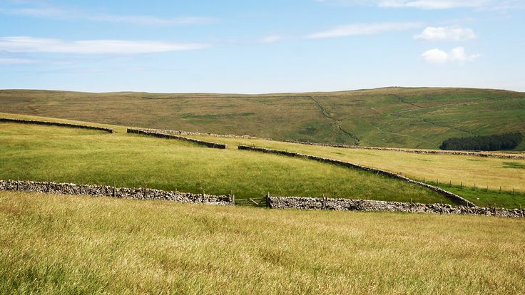 A photograph by photographer Niall O Cleirigh of fields along the penine way in England www.essentia.ie