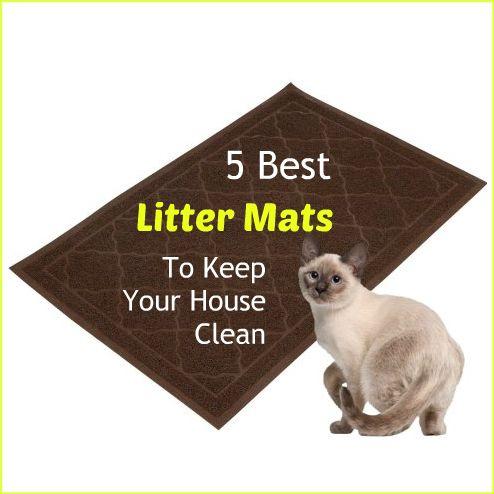 123 best Cat Litterbox images on Pinterest | Cat stuff Cats and Cat boxes & 123 best Cat Litterbox images on Pinterest | Cat stuff Cats and ... Aboutintivar.Com