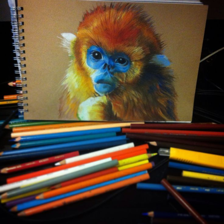 Prismacolor on pastel commissioned piece SOLD