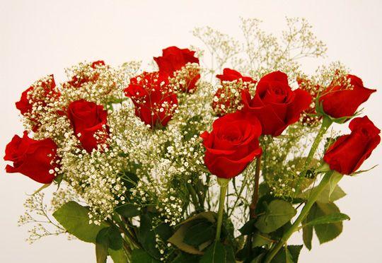 ✓ ¿Estás buscando tiendas online para enviar flores baratas? ¡Has llegado al lugar indicado! Entra ya y descubre todos los detalles ✓