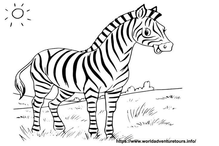 malvorlage zebra kopf  coloring pages zebra humanoid sketch