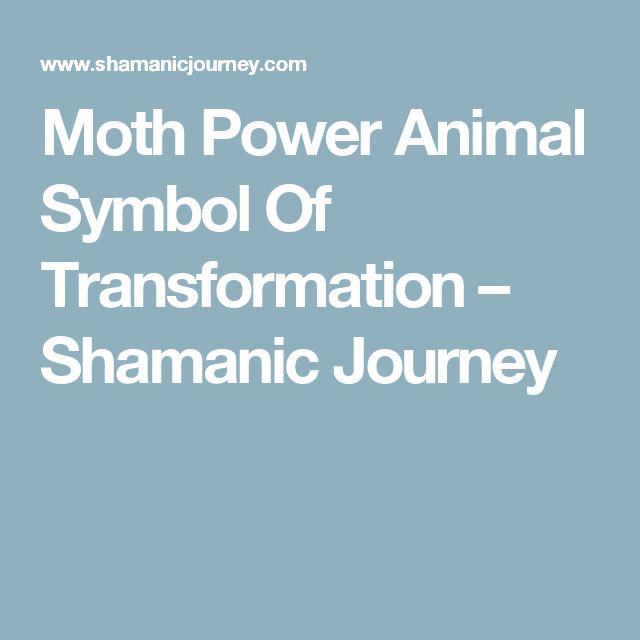 Moth Power Animal Symbol Of Transformation – Shamanic Journey