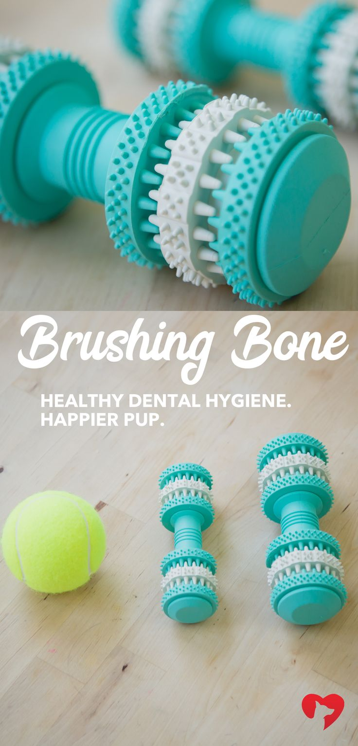 Bad oral hygiene in your pup can lead to dangerous health issues. Take steps to prevent these problems! The Brushing Bone is an easy way to help. This toy scrubs your pup's teeth while they play. *For every purchase, a toy is donated to a shelter dog in need!* #OralHygiene