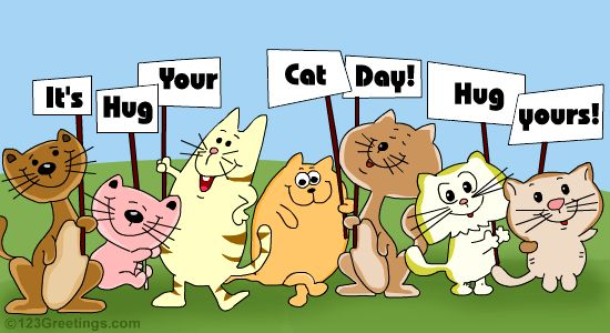 "National ""Hug Your Cat Day"" June 4th!!!"