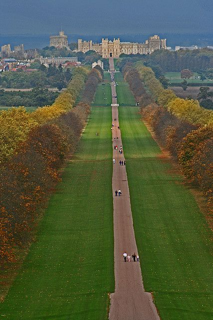 The Long Walk, Windsor Castle. (One of the towns close to my home)