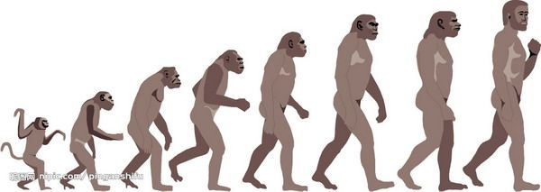 Mia-this one shows the human evolution, it is a process,  it shows a simple example of the human beings from orangutan to human, it is shows the tradition, and it like increase.