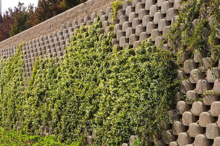 VERDURA® is a fully plantable retaining wall block system from Soil Retention.  VERDURA® walls provide the strength and function of a standard retaining wall with the added feature of adding live plantings.  VERDURA® applications include sound walls, screen walls, channel walls, garden walls, detention basin walls, raised garden beds, tree rings, edging, stream bank protection and more.