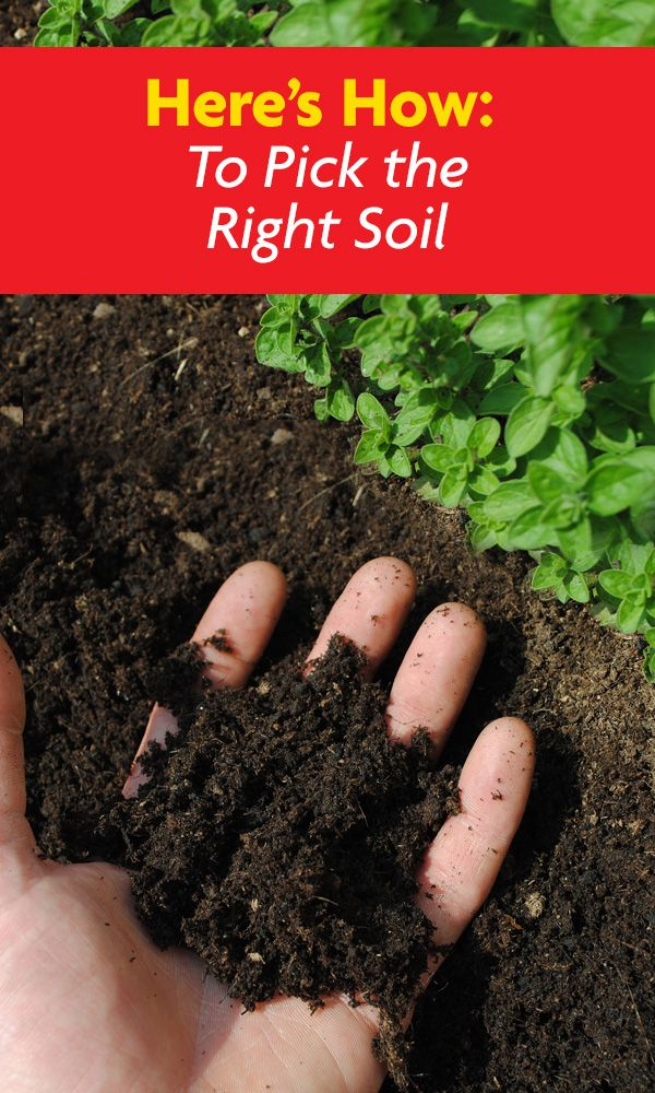 Want to know the secret to having a great looking garden? You have to start with good quality soil! This will lead to better blooms, lots of vegetables and great looking plants.