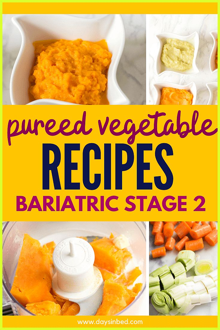 Bariatric Stage 2 Pureed Food Recipes 4 Veg