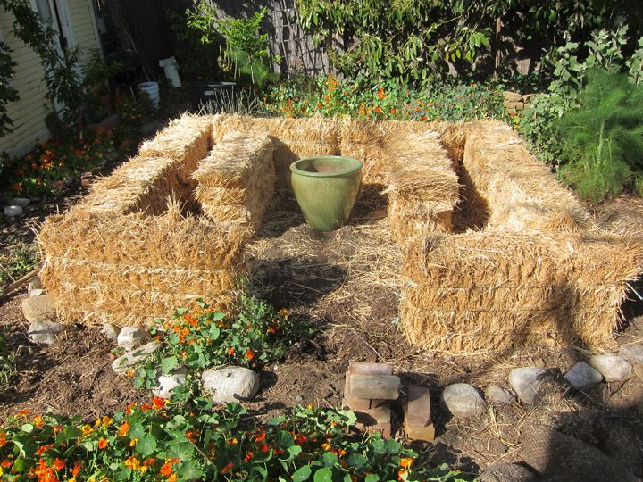 Straw Bale Gardening is great if your soil is poor or even non-existent (or if you can't be bothered to build raised beds). Follow along as the Root Simple blog gives this simple gardening technique a try.: Mulches, Roots Plants, Straws Bale Gardens Layout, Tallest Plants, Plants In Hay Bale, Roots Simple, Garden Plants, Strawbalegardennew Jpg 720 540, Gardens Plants