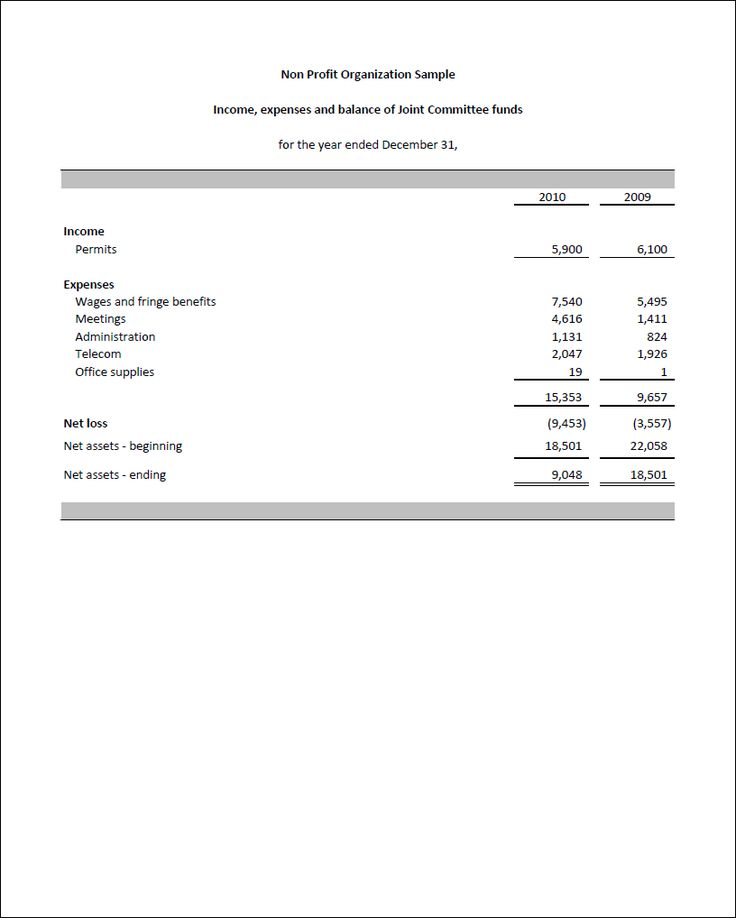 Non Profit Organization Financial Statements 1