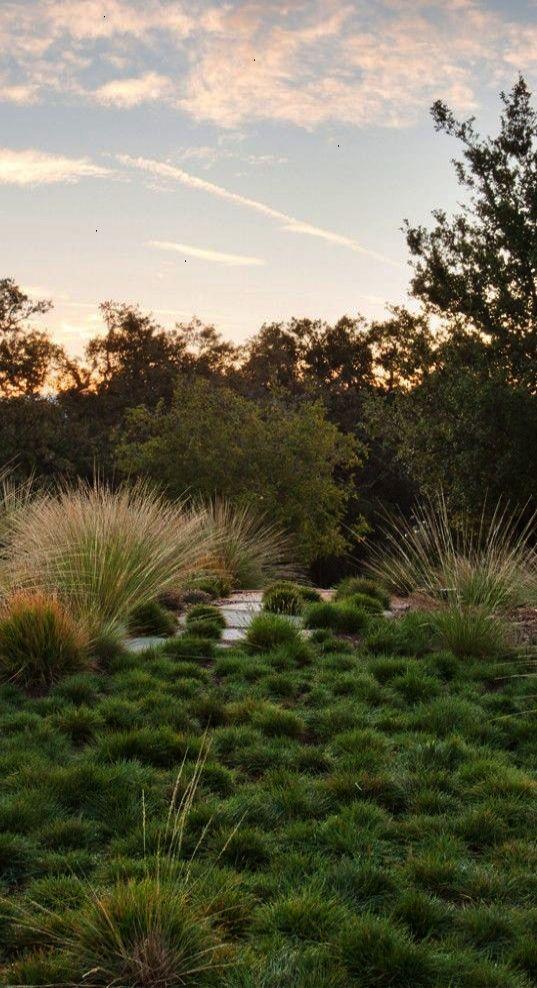 Green Belt Modern Landscape Design Characteristics Of Modern ...