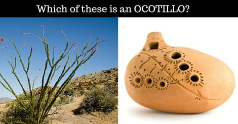 Both of them start with OC-, but only one of them is an OCOTILLO...