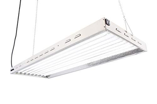 109 99 Doublelux Dl8048 T5 Flourescent 4ft 8 Lamps With 6500k And 40000 Lumen Grow Light System 8 Tubes Included 2019 Hot Rated Products Grow Lights For Plants Grow Lights Best Grow Lights