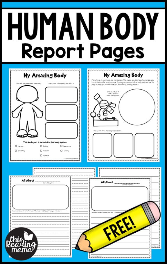 If you're working with your learners on a healthy body unit study this month, be sure to download these FREE Human Body Report Pages. These freebies come directly from my NEW Healthy Body Unit for K-2 learners. Interested in more unit studies? Be sure to check out all the unit studies we have so far! …