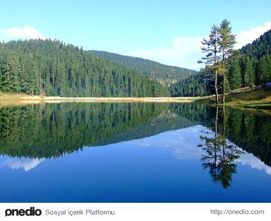 Yenice Ormanları Kamp (Karabük)