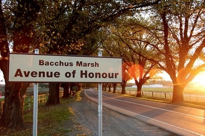 Bacchus Marsh Avenue of Honour