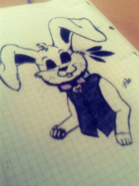 Conejo manejo Blanco y negro