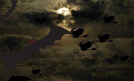 Premium Halloween Screensaver [Download] - http://www.xeonsoft.net/utilities/screen-savers/premium-halloween-screensaver-download-com/