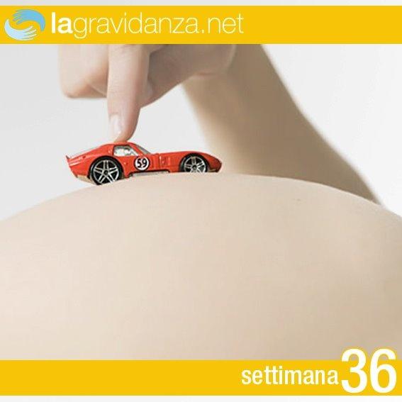http://www.lagravidanza.net/settimane/36-settimana-di-gravidanza
