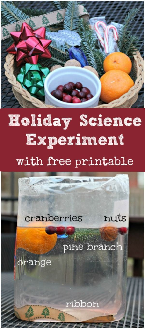Fun holiday-themed physics experiment for kids - includes FREE printable worksheet too! Christmas science and STEM activity