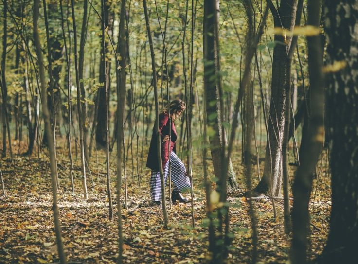 Feel cozy. Autumn, picnic, girl, inspiration, beauty, wood, forest.