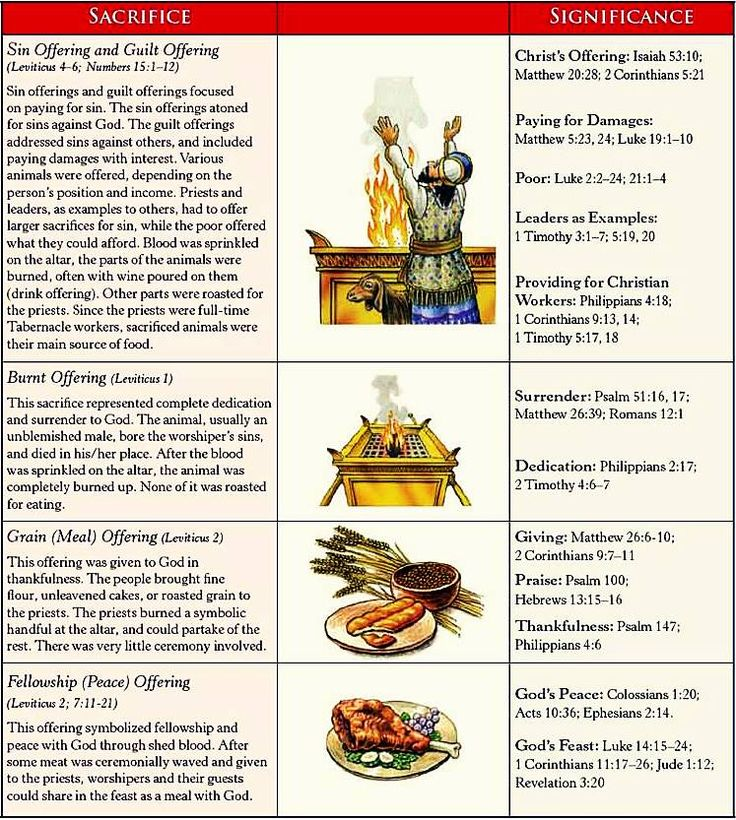 Offerings ~ Leviticus 1-4 ~ different types of offerings in leviticus  (sin offering, guilat offering, burnt offering, grain offering, fellowship offering) - Google Search
