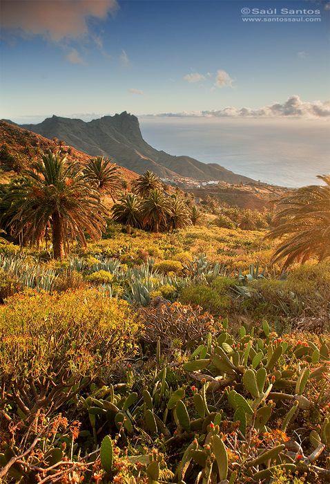 La Gomera. Canary Islands. Spain