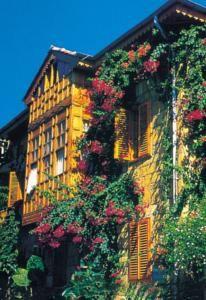 #Otel #Oteller #OtelRezervasyon - #Antalya, #Manavgat - Begonville Pansiyon Manavgat - http://www.hotelleriye.com/antalya/begonville-pansiyon-manavgat -  Genel Özellikler Bar, Gazeteler, Bahçe, Sigara İçilmeyen Odalar, Aile Odaları, Hızlı Check-In/Check-Out, Emanet Kasası, Bagaj Muhafazası, Klima, Özel Plaj Alanı Otel Etkinlikleri Barbekü Olanağı, Bisiklete binme Otel Hizmetleri Havaalanı Servisi, Odaya Servis Kahvaltı, Ütü Hizmeti, Döviz Alım Sa...