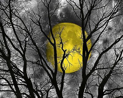 Black White Yellow Moon Tree Wall Art Home Decor Matted